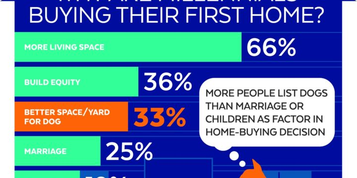 Survey: Pets Drive Millennials' Decision to Buy